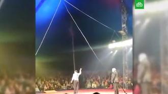 В Братске канатоходец упал с высоты на арену цирка