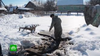 Полторы тысячи спасателей откачивают воду из затопленных алтайских поселков