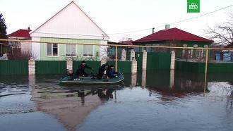 «Проснулись — вода»: жители пяти районов Воронежской области отрезаны от цивилизации