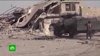 Халифат 2.0: после разгрома ИГИЛ в Сирии мир столкнулся с новой угрозой
