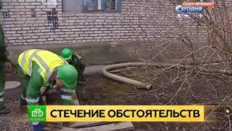 Неисправный коллектор стал причиной паводка в петербургском квартале