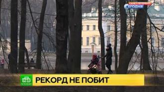 Весенние качели: на смену теплым дням в Петербурге придет похолодание