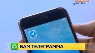 Жизнь без Telegram: как Петербург реагирует на блокировку мессенджера