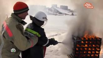 Песок, соль и тальк: начинка порошковых огнетушителей делает их бесполезными