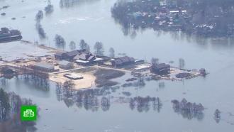 МЧС усиливает группировку спасателей в затопленных районах Воронежской области