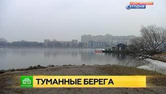 Петербург накрыло туманом из-за аномально быстрого таяния снега