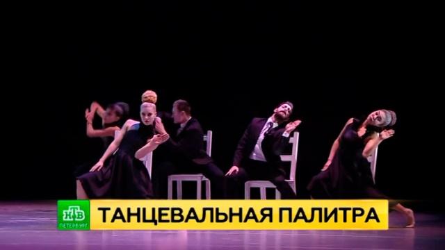 Классика, новаторство и хулиганство: гала-концерт Dance Open представил лучшие балетные номера мира.Санкт-Петербург, балет, театр, фестивали и конкурсы.НТВ.Ru: новости, видео, программы телеканала НТВ