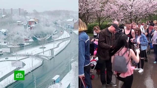 На контрасте: майские праздники принесли российским регионам снегопады и летнюю жару.весна, Москва, погода, снег, Томск.НТВ.Ru: новости, видео, программы телеканала НТВ