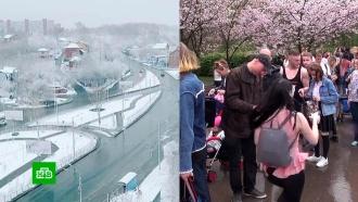 На контрасте: майские праздники принесли российским регионам снегопады и летнюю жару