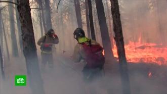 Пожары в России охватили около 100 тыс. гектаров леса