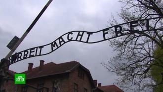 Российская молодежная делегация приняла участие в «Марше жизни» в Освенциме