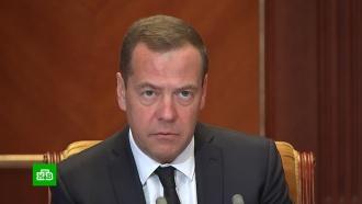 Медведев: благодаря импортозамещению Россия стала более самодостаточной