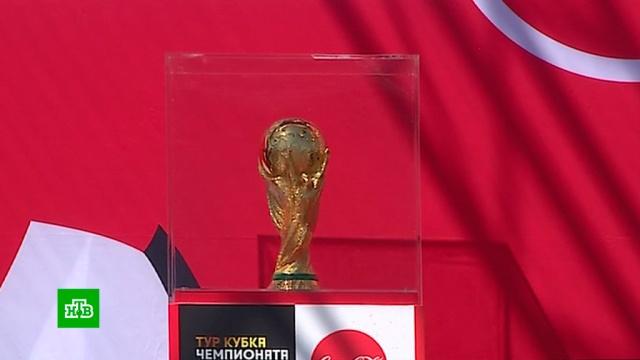 В Самаре представили кубок чемпионата мира по футболу.Самара, футбол, спорт.НТВ.Ru: новости, видео, программы телеканала НТВ