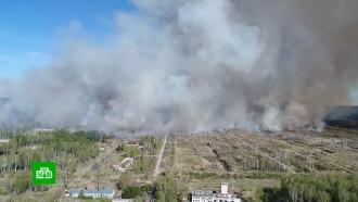 Площадь пожара на военном полигоне вУдмуртии достигла 50га