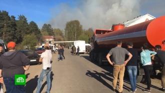 Тушение пожара на военном полигоне вУдмуртии приостановили до рассвета