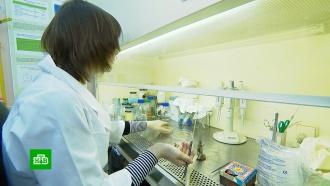 Устойчивые к антибиотикам инфекции угрожают жизням миллионов людей