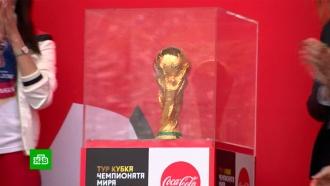 Сотни нижегородцев выстроились в очередь к кубку чемпионата мира по футболу