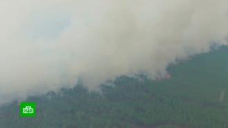 Двое сотрудников лесхоза погибли в огненной ловушке в Бурятии