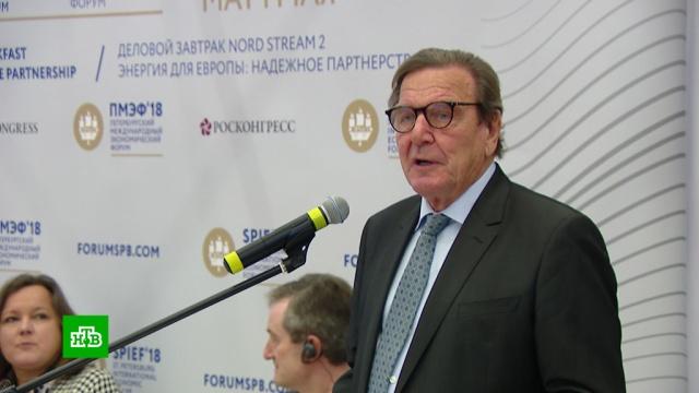 Шрёдер объяснил сопротивление США «Северному потоку— 2».Европейский союз, ПМЭФ, США, Северный поток, газ, газопровод.НТВ.Ru: новости, видео, программы телеканала НТВ