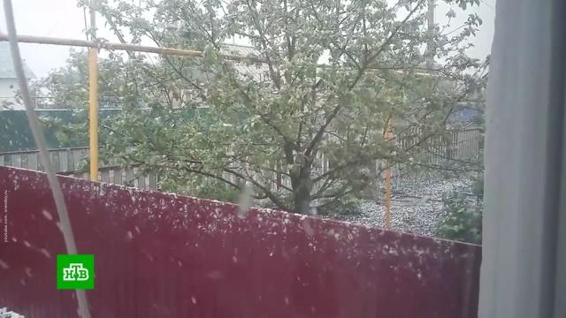 Зима летом: внескольких городах России 1июня выпал снег.Башкирия, Екатеринбург, Ямало-Ненецкий АО, лето, снег.НТВ.Ru: новости, видео, программы телеканала НТВ