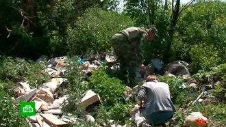 В Курске накажут виновных, устроивших свалку медицинских отходов на берегу реки