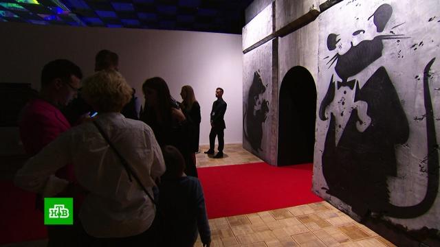 ВМоскве открывается персональная выставка Бэнкси.Москва, выставки и музеи, живопись и художники, искусство.НТВ.Ru: новости, видео, программы телеканала НТВ