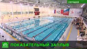 Петербург принял чемпионат Росгвардии по плаванию