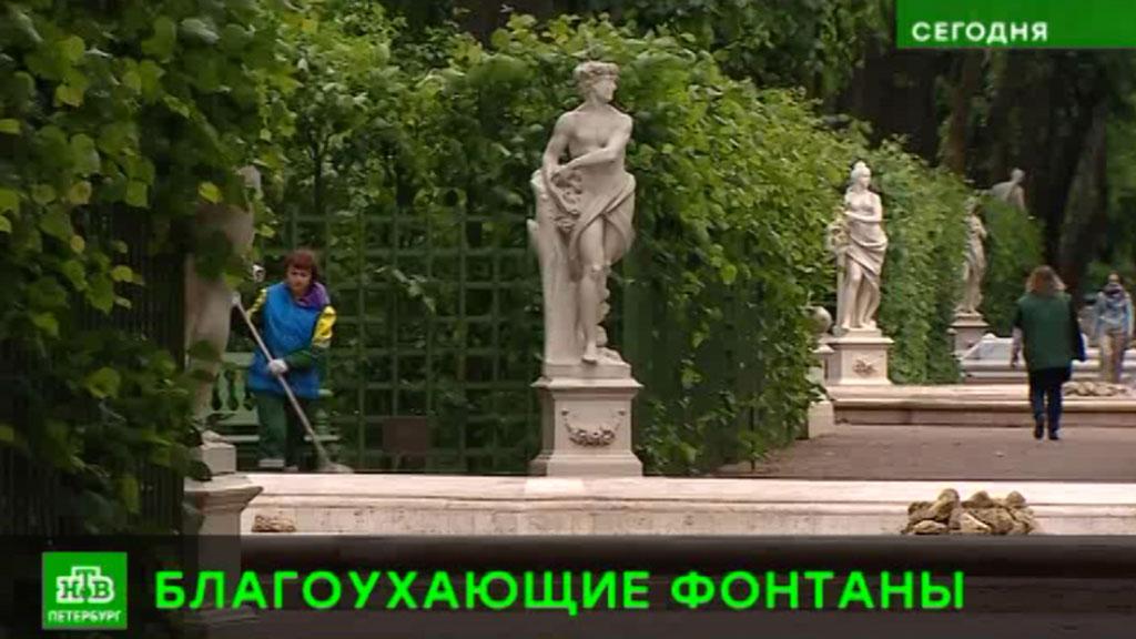 51c34b835cf48 Императорские сады России» впервые заблагоухают в Летнем саду // НТВ.Ru
