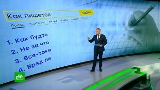 «Яндекс» составил рейтинг самых популярных запросов, связанных срусским языком