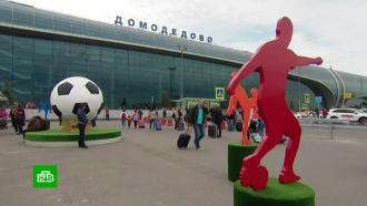 На ЧМ-2018 на тракторе и самолетах: Домодедово готовится к наплыву фанатов