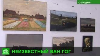 Петербуржцам показывают цифрового Ван Гога