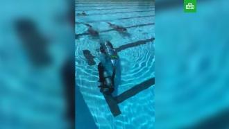 Илон Маск опубликовал видео испытания <nobr>мини-субмарины</nobr> для спасения школьников в&nbsp;Таиланде