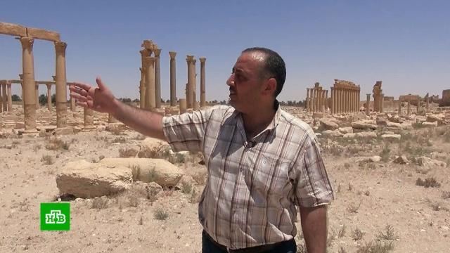 Сирийцы начали восстанавливать древности Пальмиры без участия ЮНЕСКО.войны и вооруженные конфликты, история, памятники, реконструкция и реставрация, Сирия.НТВ.Ru: новости, видео, программы телеканала НТВ