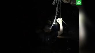 Илон Маск показал видео из затопленной пещеры вТаиланде