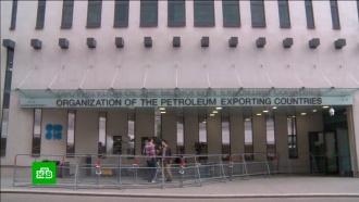 ОПЕК+ изучает возможность бессрочного сотрудничества с Россией по ценам