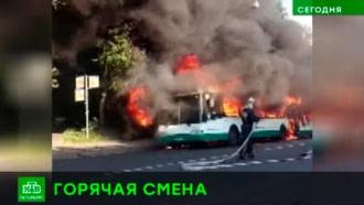 В Петербурге автобус вспыхнул вместе с пассажирами