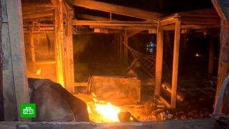 Жители Греции рассказали, как спаслись от лесных пожаров в море