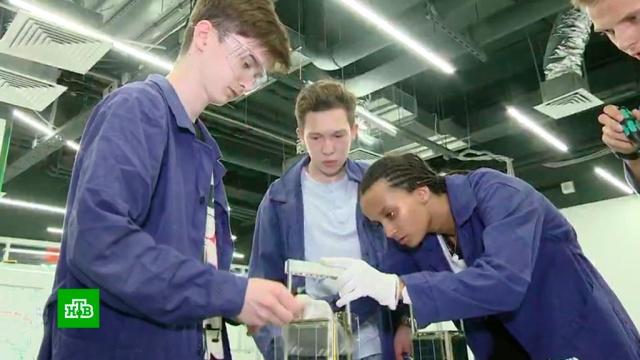 «Большие вызовы»: десятки школьников участвуют в образовательной программе «Сириуса».дети и подростки, наука и открытия, Сочи, образование, изобретения.НТВ.Ru: новости, видео, программы телеканала НТВ