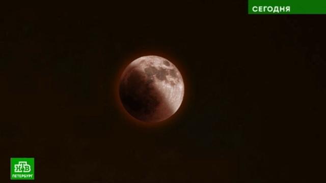 Наблюдать за «смущенной» Луной и противостоянием Марса петербуржцам может помешать облачность.Луна, Марс, Санкт-Петербург, астрономия, космос.НТВ.Ru: новости, видео, программы телеканала НТВ