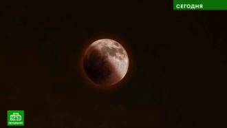 Наблюдать за «смущенной» Луной и противостоянием Марса петербуржцам может помешать облачность
