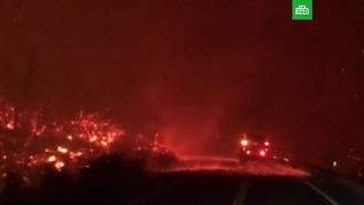 Жертвами лесных пожаров вКалифорнии стали пять человек