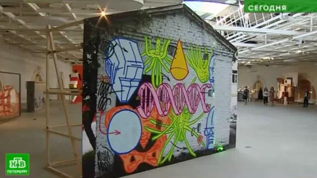 Уличное искусство собрали на стенах петербургского «Манежа».Санкт-Петербург, выставки и музеи, граффити, живопись и художники, искусство.НТВ.Ru: новости, видео, программы телеканала НТВ