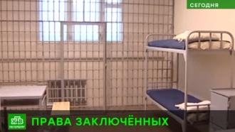 ФСИН проверяет колонии и СИЗО Петербурга после информации об издевательствах над заключенными