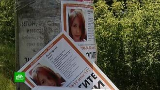 Пропавшую под Нижним Новгородом девочку ищут с помощью беспилотников