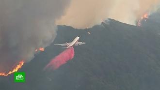 Лесной пожар в Калифорнии стал крупнейшим за историю штата