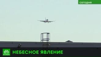 Женщина родила сына на борту самолета, летевшего из Симферополя вПетербург