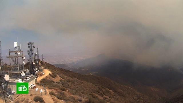 Устроитель пожаров вкалифорнийских лесах попал вобъектив камеры.Испания, Португалия, США, лесные пожары, пожары.НТВ.Ru: новости, видео, программы телеканала НТВ