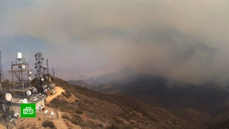 Устроитель пожаров вкалифорнийских лесах попал вобъектив камеры