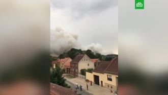 Три поселка под Берлином эвакуировали из-за крупного лесного пожара