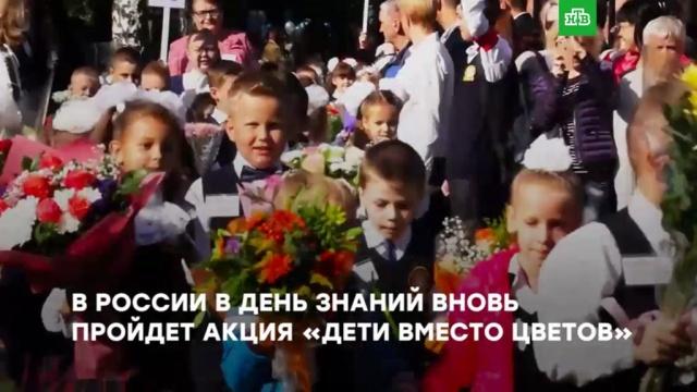 «Дети вместо цветов»: кому икак помогает благотворительная акция ко Дню знаний.дети и подростки, здоровье, 1 Сентября, образование, благотворительность, торжества и праздники, болезни, школы, ЗаМинуту.НТВ.Ru: новости, видео, программы телеканала НТВ